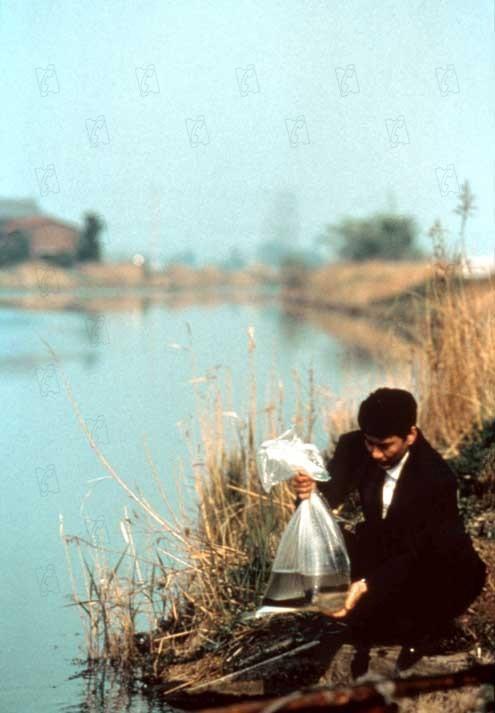Un jour, une palme : L'Anguille (1997)