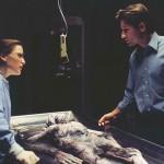 The X Files… par Amandine Srs