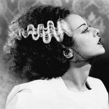 La Fiancée de Frankenstein, La Petite Rubrique des Horreurs