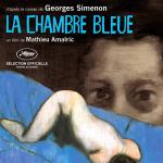 Incertain regard (critique de La Chambre bleue, de Mathieu Amalric)