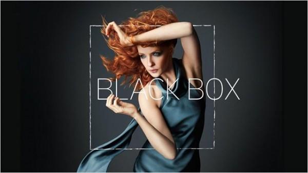 Black Box, avec Kelly Reilly.