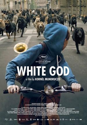 1-feher-isten-film-plakat-white-god-dogs-perros-blanco-cartel-poster-pelicula-film-cine