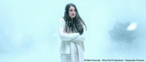 WHITE_BIRD-cr_MattKennedy