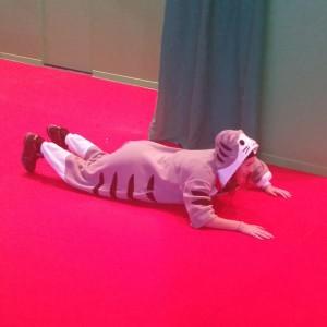 Toi aussi, balade toi à plat ventre sur un skate déguisé en chat géant...