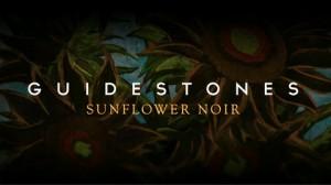 Guidestones sunflower noir