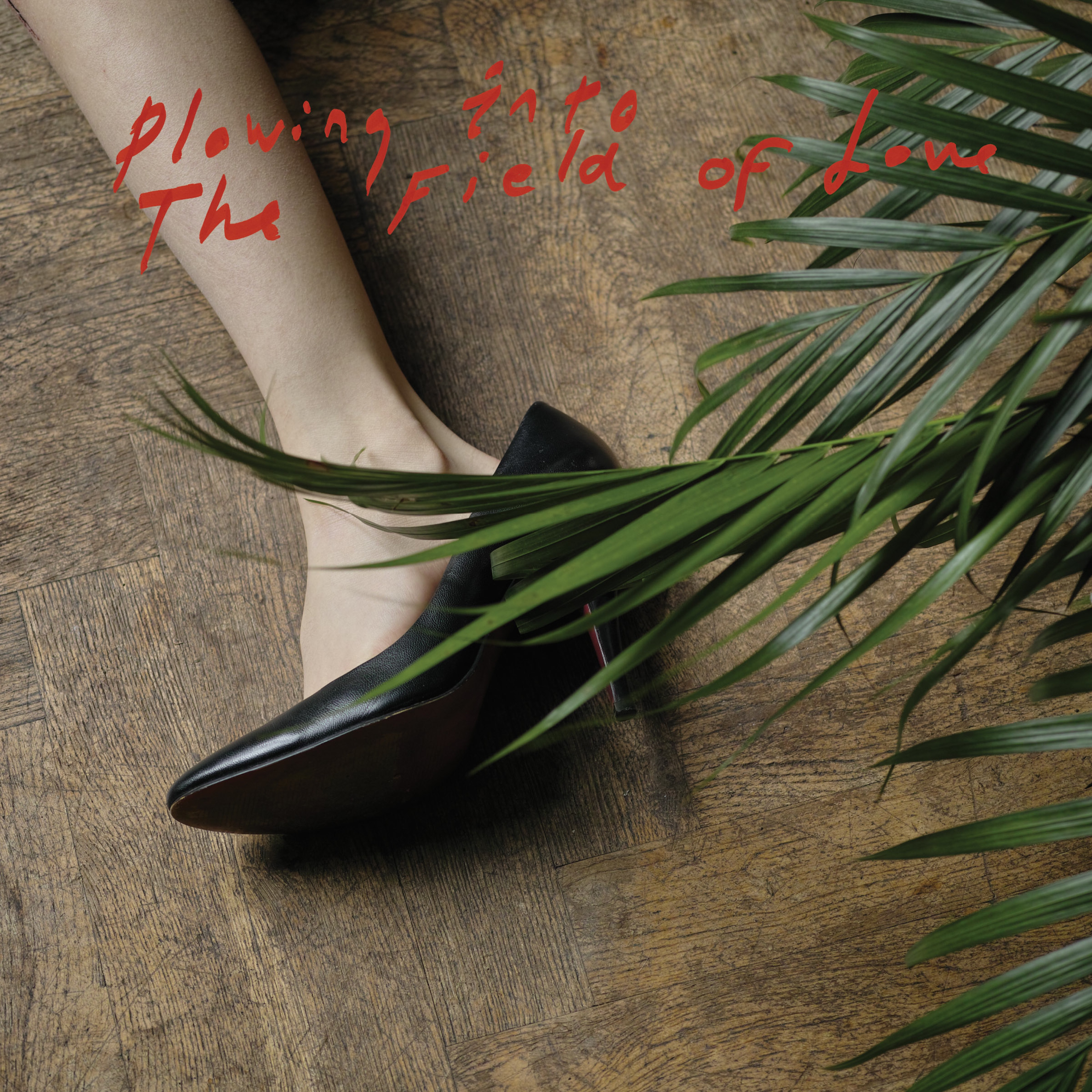 Music Mini Review: Iceage – Plowing into the field of love (Matador)