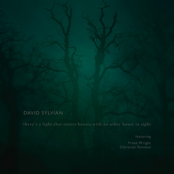 Music Mini Review : David Sylvian – There's a light that enters houses with no other house in sight (Samadhisound)
