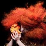 Le nouveau Björk pour mars 2015