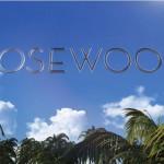 Pilote Automatique : Rosewood (FOX)