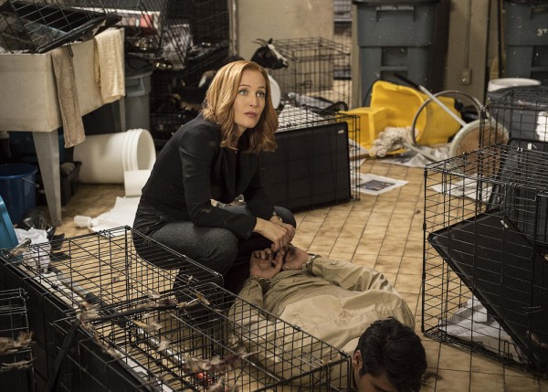 Action!Scully, toujours efficace
