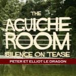 Aguiche Room : Peter et Elliott le dragon