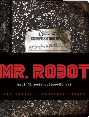 mr-robot_red-wheelbarrow_looney-esmail_couv