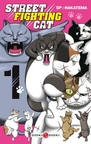 street-fighting-cat-1-doki