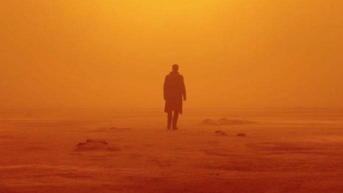 #Critique Blade Runner 2049