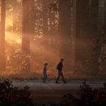 Life is Strange 2 : frère d'arbres