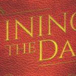 Shining in the Dark : pas très brillant, tout ça